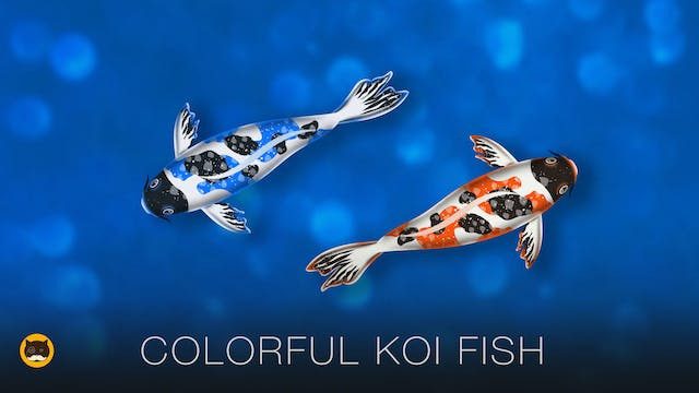 CAT GAMES - Koi Fish. Videos for Cats