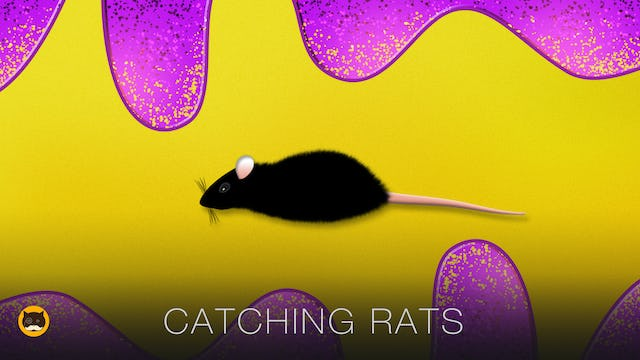 Cat Games - Catching Rats. Mouse Video for Cats