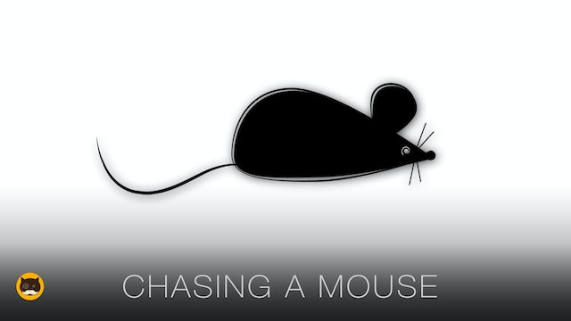 Cat TV Mice - Chasing a Mouse