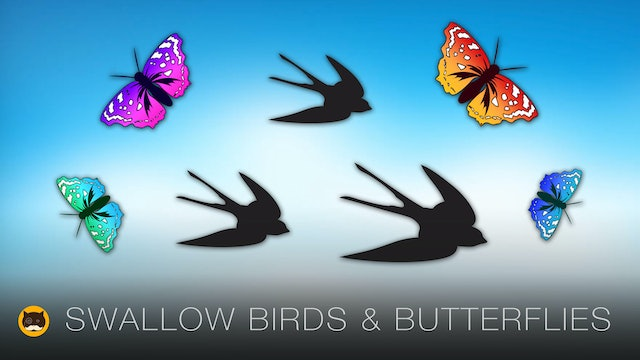 Cat Games - Swallow Birds and Butterflies. Video for Cats