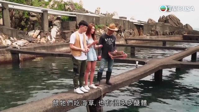 台灣原味道2 | 第01集