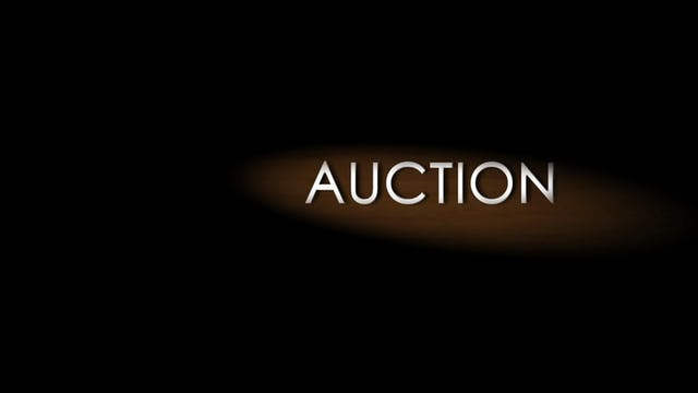 Auction: Season 1, Episode 1
