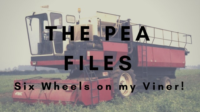 The Pea Files: Six Wheels on my Viner!