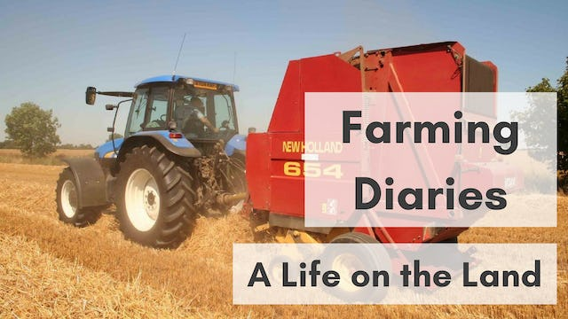 Farming Diaries: A Life On The Land
