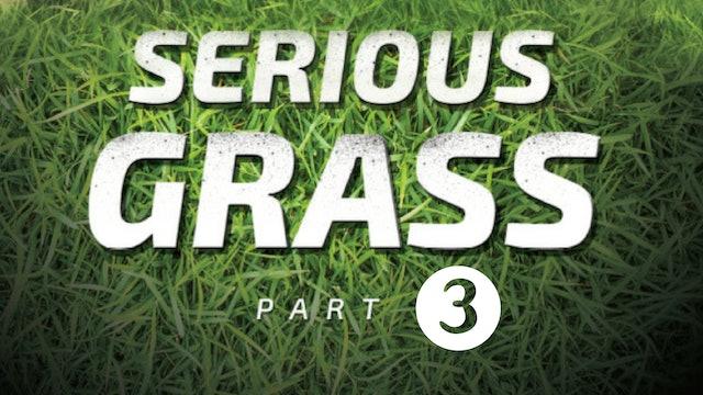 Serious Grass: Part 3