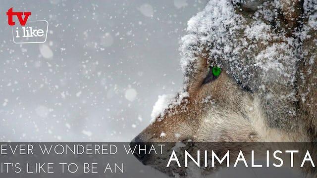 ANIMALISTA