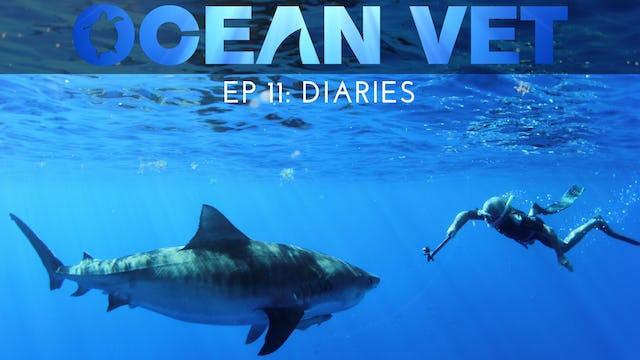 Ocean Vet: Season 1, Episode 11
