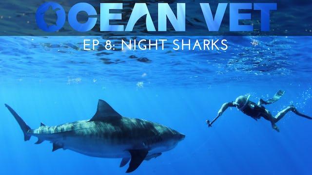Ocean Vet: Season 1, Episode 8