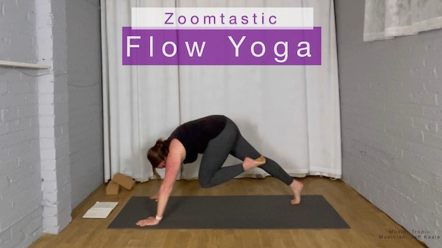 Trailer for Zoomtastic Flow Yoga