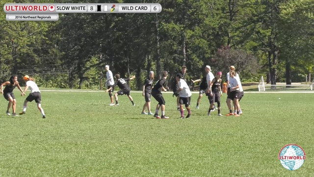 2016 Northeast Regionals: Boston Slow White v. Boston Wild Card (X, Game to Go)