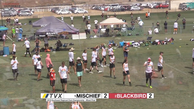 Mischief vs. Blackbird | Mixed Final | Southwest Regionals 2019