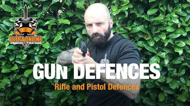 Gun Defences