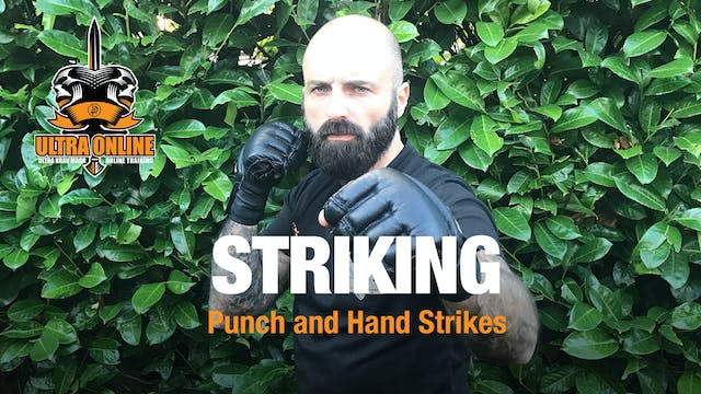 Striking - Punches + Hand Strikes