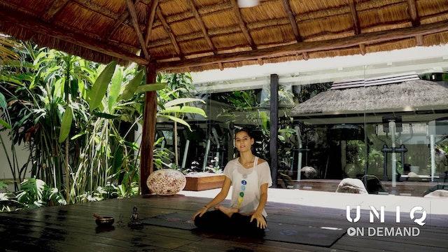 Entrenamiento 3 - Yoga para Principiantes con Roxane