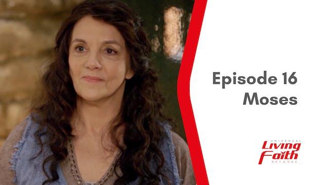 Episode 16