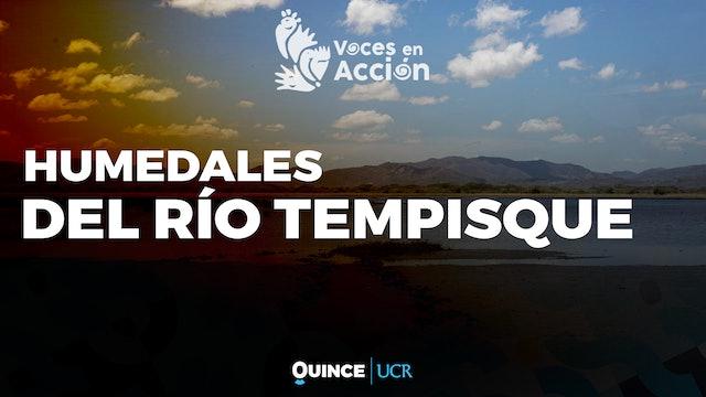 Voces en Acción: Humedal Mata Redonda