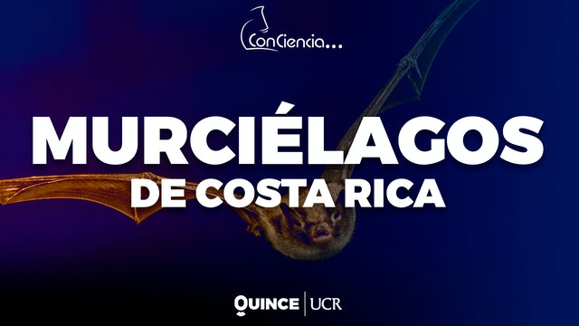 ConCiencia: Murciélagos de Costa Rica