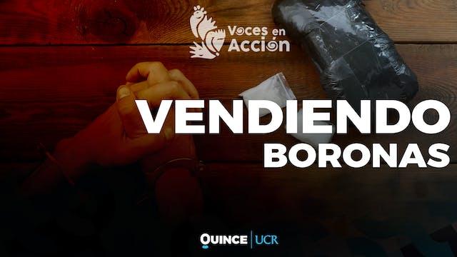 Voces en Acción: Vendiendo boronas