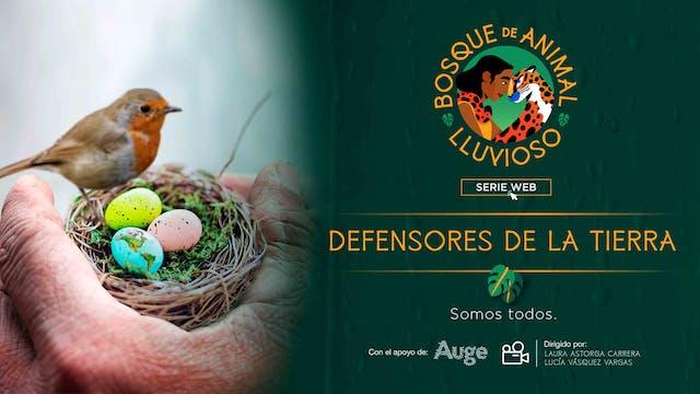 Bosque de animal lluvioso: Defensores...