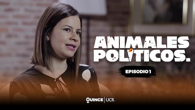 Animales políticos: Episodio 1