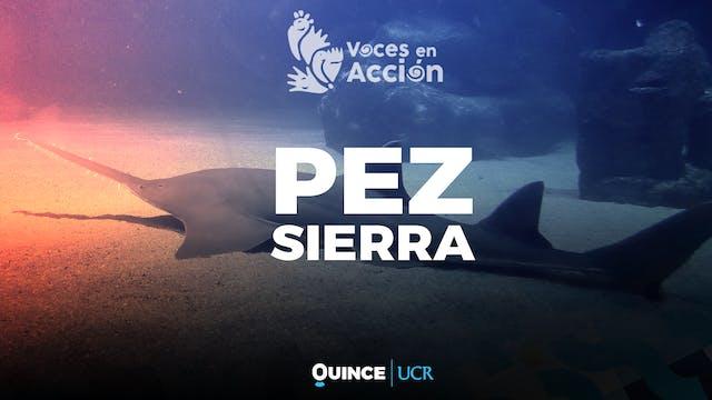 Voces en Acción: Pez Sierra