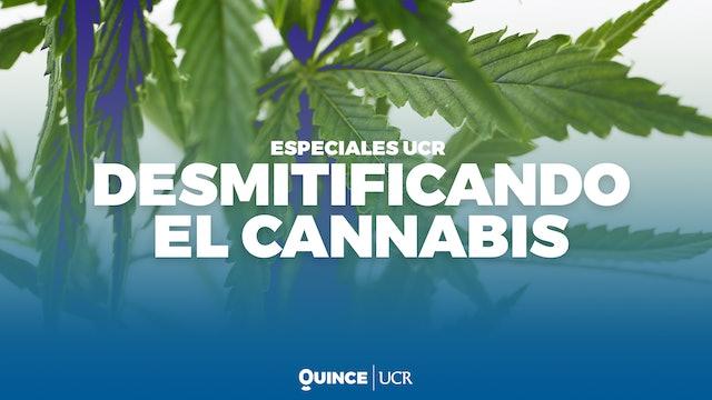 Especiales UCR: Desmitificando el cannabis