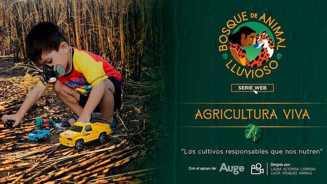 Bosque de animal lluvioso: Agricultur...