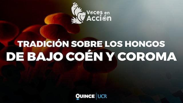 Voces en Acción: Tradición oral sobre los hongos en Bajo Coen y Coroma