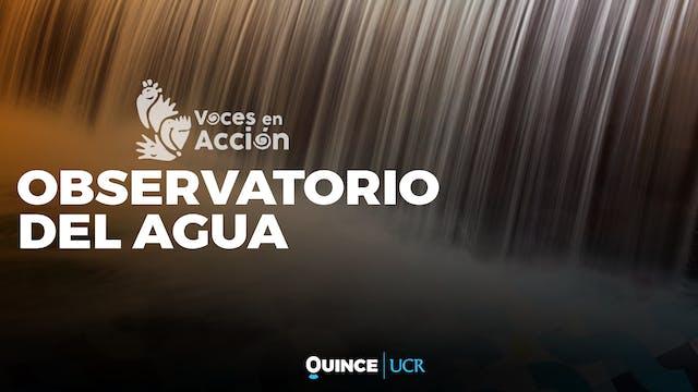 Voces en Acción: Observatorio del agua