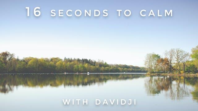 16 Seconds to Calm: davidji