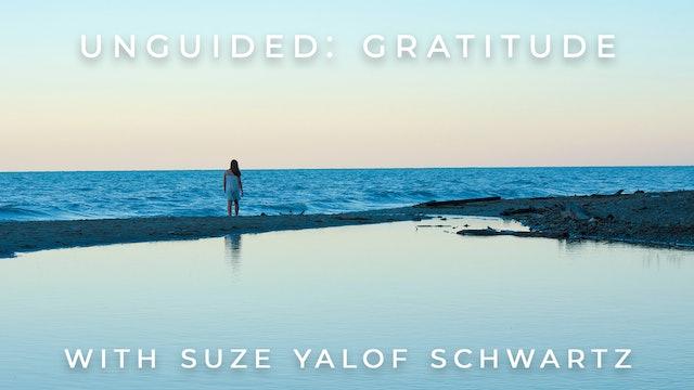 Unguided: Gratitude: Suze Yalof Schwartz