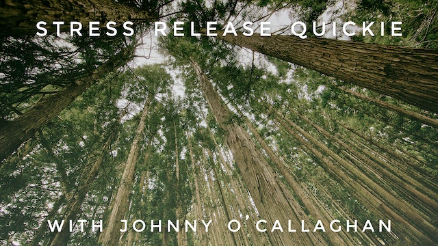 Stress Release Quickie: Johnny O'Callaghan