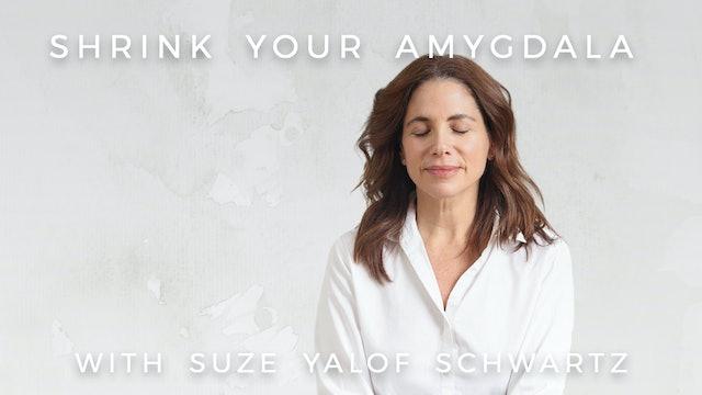 Shrink Your Amygdala: Suze Yalof Schwartz