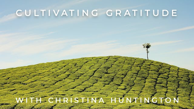 Cultivating Gratitude: Christina Hunt...
