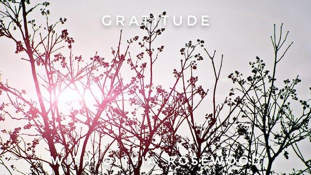 Gratitude: Olivia Rosewood