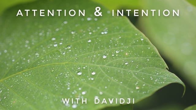Attention & Intention: davidji