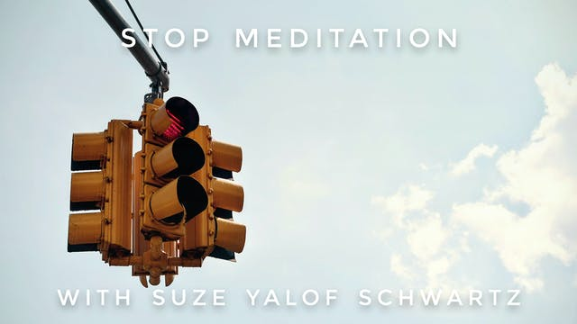 S.T.O.P Meditation: Suze Yalof Schwartz