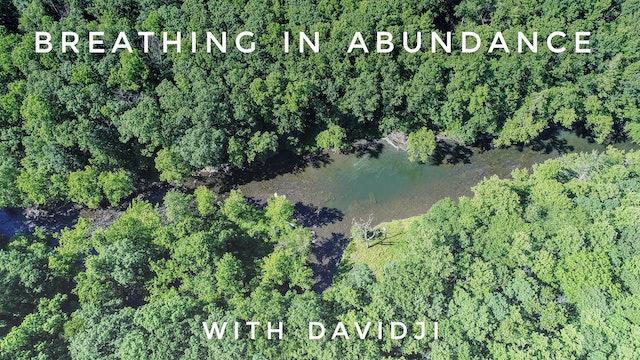 Breathing In Abundance: davidji