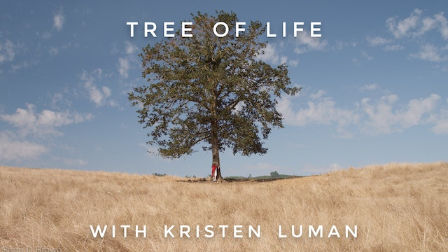 Tree of Life: Kristen Luman
