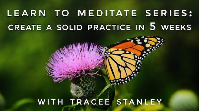 Learn to Meditate Series: Create a Solid Practice in 5 Weeks: Tracee Stanley