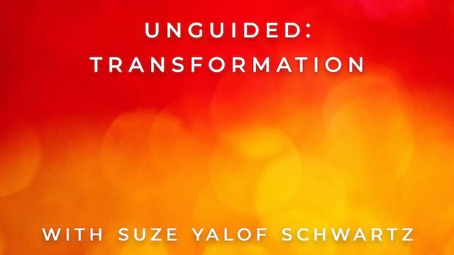 Unguided: Transformation: Suze Yalof Schwartz