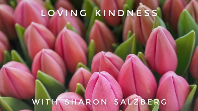 Loving Kindness:  Sharon Salzberg