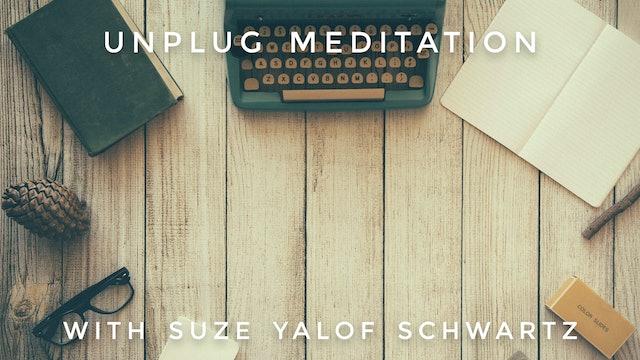 U.N.P.L.U.G. Meditation: Suze Yalof Schwartz