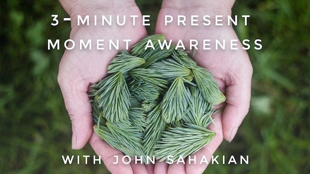 3-Minute Present Moment Awareness: John Sahakian