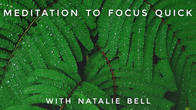 Meditation to Focus Quick: Natalie Bell