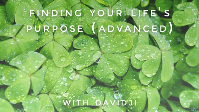 Finding Your Life's Purpose Advanced: davidji