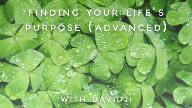 Finding Your Life's Purpose Advanced:...