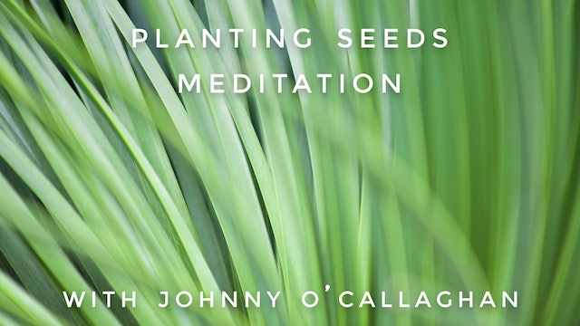 Planting Seeds Meditation: Johnny O'Callaghan