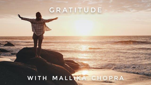 Gratitude PM: Mallika Chopra