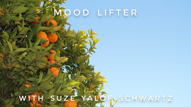 Mood Lifter: Suze Yalof Schwartz